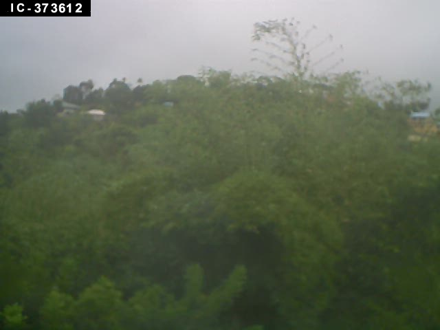 Tobago live Webcam